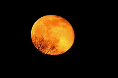 April Full Moon <i>- by Cathy Contant</i>