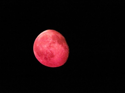 Red Moon July 4th <i>- by Cathy Contant</i>